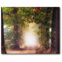 Courtside Market 20-Inch x 16-Inch Fall Colors Canvas Wall Art