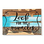 "Sweet Bird & Co. ""Look For Miracles"" 12-Inch x 8-Inch Wood Wall Art"