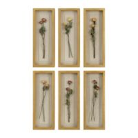 Uttermost Rosalie Long Stem Shadow Box 13-Inch x 8-Inch Framed Wall Art (set of 6)