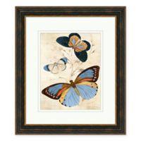 Butterfly Study 2 25-Inch x 29-Inch Framed Wall Art