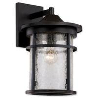 Bel Air Lighting Transitional 1-Light 17.75-Inch Wall Lantern in Black