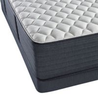 Beautyrest® Platinum™ Spring Grove™ Extra Firm Low Profile Twin Mattress Set