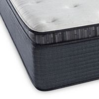 Beautyrest® Platinum™ Spring Grove Plush Pillow Top Queen Mattress