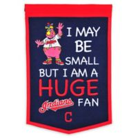 MLB Cleveland Indians Lil Fan Traditions Banner