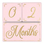 The Peanut Shell® 3-Piece Milestone Block Set in Pink/Gold