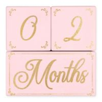 The Peanutshell™ 3-Piece Milestone Block Set in Pink/Gold