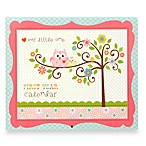C.R. Gibson® Happy Girl Baby Memory Books in Baby Calendar