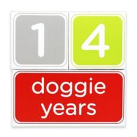 Pearhead Pet® Pet Age 3-Piece Photo Prop Block Set