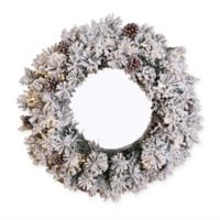 24-Inch Flocked and Glittery Wreath