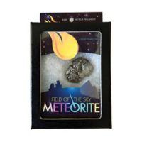 Copernicus Field of the Sky Meteorite Memory Game