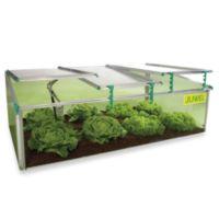 BioStar Premium Cold-Frame 8mm Mini Greenhouse