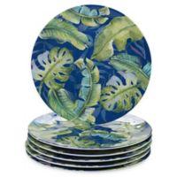Certified International Tropicana Dinner Plates (Set of 6)