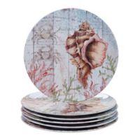 Certified International Sanibel Dinner Plates (Set of 6)