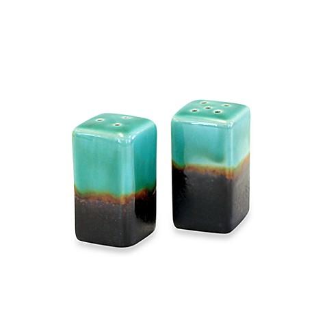 Baum Galaxy Salt and Pepper Shaker Set in Jade - Bed Bath & Beyond
