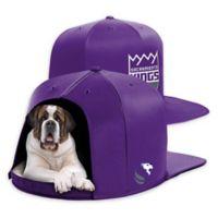 NBA Sacramento Kings NAP CAP Large Pet Bed
