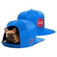 NBA Detroit Pistons NAP CAP Medium Pet Bed