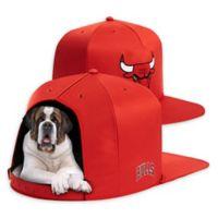 NBA Chicago Bulls NAP CAP Large Pet Bed