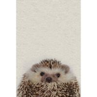 Marmont Hill Cute Porcupine 12-Inch x 18-Inch Canvas Wall Art