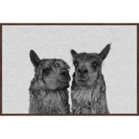 Marmont Hill Llama Couple 36-Inch x 24-Inch Framed Wall Art
