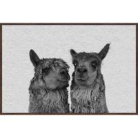 Marmont Hill Llama Couple 36-Inch x 24-Inch Framed Wall Art