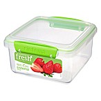 Sistema® Fresh™ 5-Cup Lunch Plus Food Container in Green