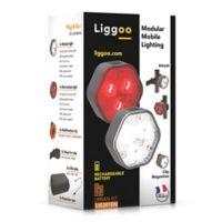 Liggoo® Multi-Purpose Freehand Lighting Urban Kit in Orange