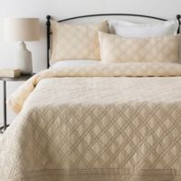 Surya Kojo King/California King Duvet Cover Set in Cream/Grey