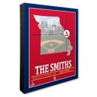 MLB St. Louis Cardinals Team Coordinates Canvas Framed Print Wall Art