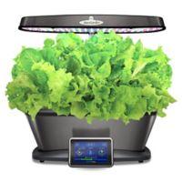 AeroGarden™ Bounty Elite Wi-Fi Home Gardening System in Platinum