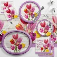 Creative Converting 89-Piece Mother's Day Brunch Tableware Kit