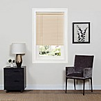 GII Deluxe Sundown 23-Inch x 64-Inch Cordless Mini Blind in Alabaster