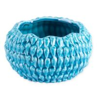 Zuo® Anis Bowl in Turquoise