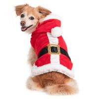 Holiday Pet Santa Claus Small Costume