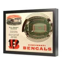 NFL Cincinnati Bengals Stadium Views Wall Art