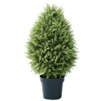 National Tree Company® 36-Inch Artificial Cypress Tree in Planter