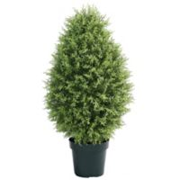 National Tree Company® 40-Inch Artificial Cypress Tree in Planter