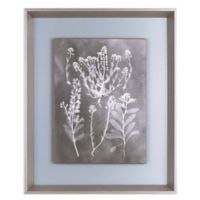 ArtMaison Canada Herbarium Study III 23.5-Inch x 19.5-Inch Framed Print Wall Art