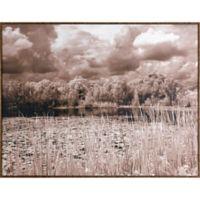 "ArtMaison Canada ""Silent Lake"" Framed Print Wall Art"
