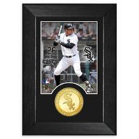 MLB Avisail Garcia Bronze Coin Mini Photo Mint