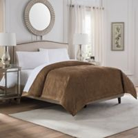 Valeron Caruso Velvet King Coverlet in Gold