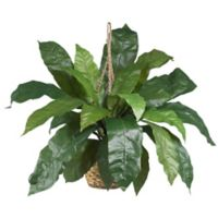 Nearly Natural Artificial Bird's Nest Fern Hanging Plant in Basket