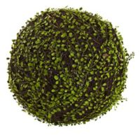 Nearly Natural 15-Inch Artificial Mohlenbechia Ball