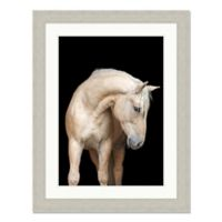 Regal Horse 35-Inch x 45-Inch Framed Wall Art