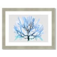 Transparent Coral Layers 45-Inch x 35-Inch Framed Wall Art