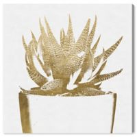 Oliver Gal Gold Plant 30-Inch x 30-Inch Canvas Wall Art