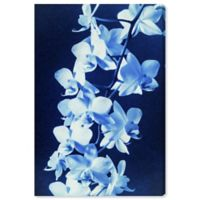 Oliver Gal Orchid Sun Cyanotype 60-Inch x 40-Inch Canvas Wall Art