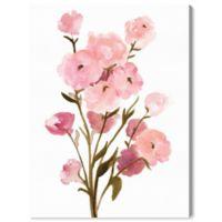 Olive Gal Blush Ranunculus Buds 32-Inch x 24-Inch Canvas Wall Art