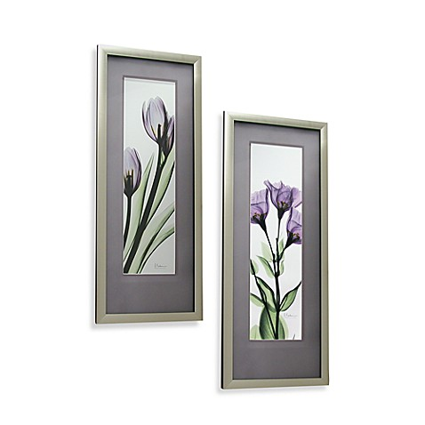 X Ray Purple Floral Wall Art Bed Bath Beyond