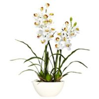 Nearly Natural 30-Inch Artificial Cymbidium Flower Arrangement with Vase