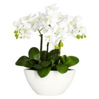 Nearly Natural 15-Inch Artificial Phalaenopsis Flower Arrangement with Vase
